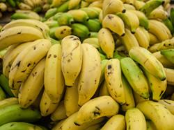 Фрукты — Бананы