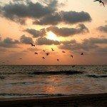 india goa sunset
