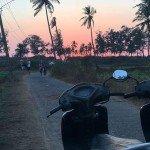 betalbatim india goa beach sunset trees beautiful