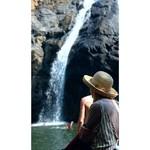 dudhsagar goa nature falls