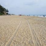 betalbatim india goa beach nature