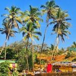 @instagram: #goa #vagatorbeach #vagator #anjuna #india #indianocean #palms #woman #indianwoman #trees #travel #travelgram #igtravel #sky #sun #sunshine #sunnyday