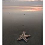 varca goa beach
