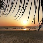 colva goa beach