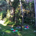 @instagram: Так радостно преподавать йогу в таком месте! ????❤️ . #гоа#индия#йогатур#йогатурвиндию#йогатурвгоа#йогатурвгоаизмосквы#йогатурвгоаизперми#панчакарма#йоганаморе#йогавиндии#йогавгоа#кандолим#йогавкандолиме#йогакандолим#yogacandolim#candolim