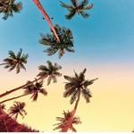 @instagram: When the sky turns into a canvas❤️#goa #goadestinations #goadiares#sunday#goabeach#candolim#goandcapturethelight#