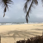 @instagram: On this terribly cold windy day in Ontario, one can only dream of the warmth and gentle breeze on the #SouthGoaBeaches. Miss the dancing #shadows of the #palmtrees on #MoborBeach #cavelossim