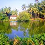 @instagram: #Goa #Arpora #magic