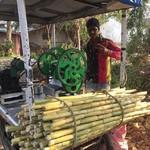 @instagram: Maistettiin tällä viikolla bambujuomaa. Oli kyllä mielenkiintoinen maku.???? Kaveri, jonka nimi ei valitettavasti jäänyt mieleen, veti bambut ehkä viitisen kertaa koneensa läpi. #bambujuoma #intia #goa #colva #24032019
