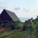 vagator goa beach