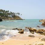 @instagram: #palolem #palolembeach #goa #india #nature #landscape #ocean #beach #travel