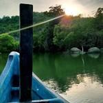 @instagram: #backwaters#palolem