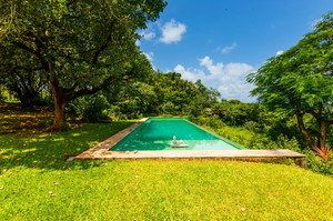 Jungle Villa 2 — Аренда вилл в Алдоне